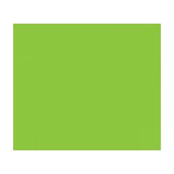 Botanical Medicine | Services | Vitalship Naturopathic Family Medicine