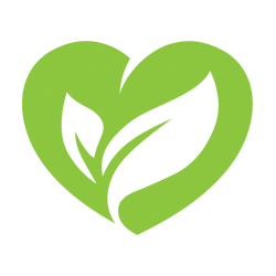 Family Medicine | Vitalship Naturopathic Family Medicine