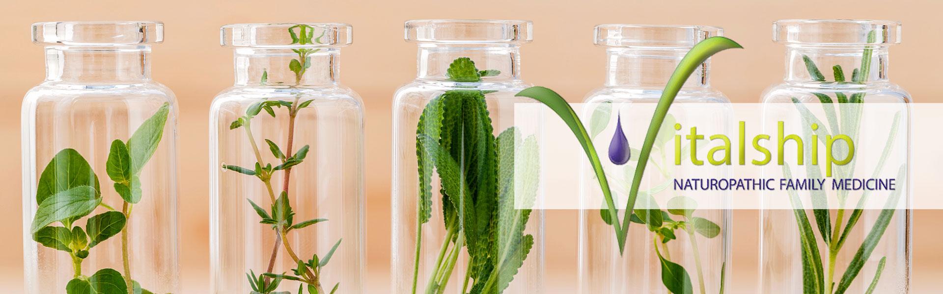 Natural Doctors in Mesa, Arizona | Vitalship Naturopathic Family Medicine